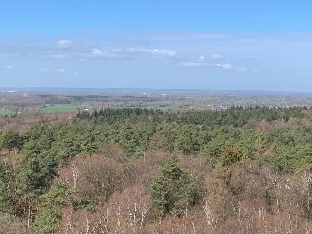 uitzicht hulzenberg montferland